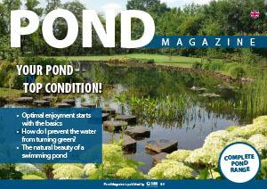 Le magazine de l'étang