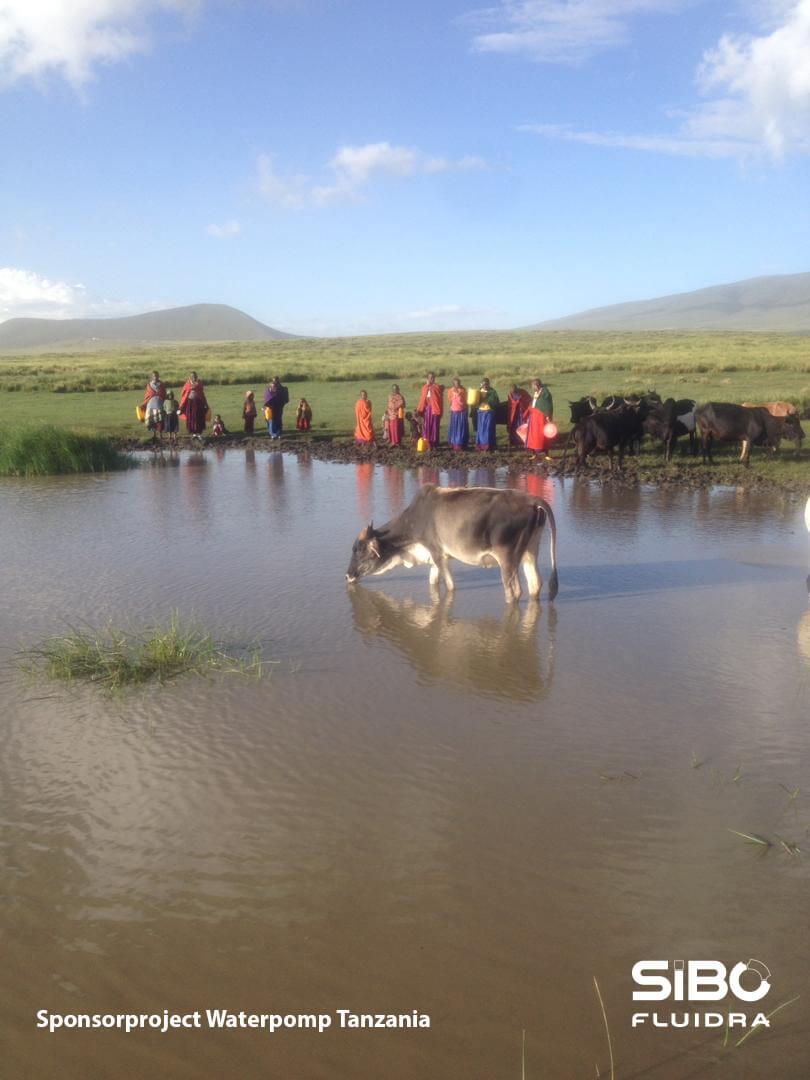 Foto Tanzania 1
